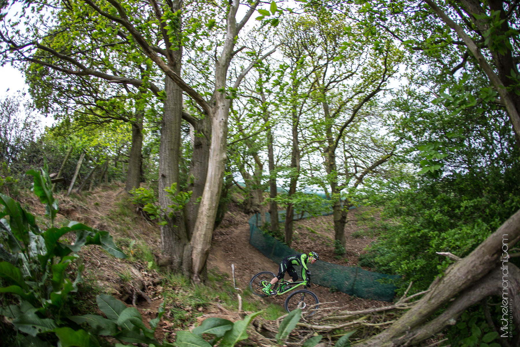 Looking for different angles in Hadleigh park - Michele Mondini